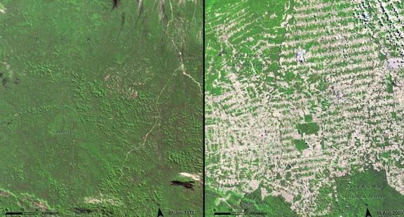 Stan Rondonia w Brazylii w 1975 i 2009 roku