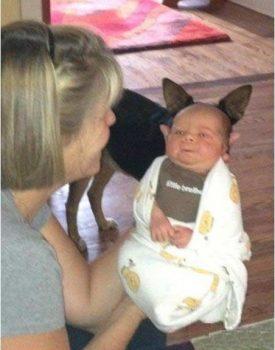 Dziecko hybryda?