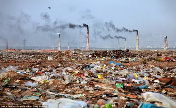 Zanieczyszczenia wszelkiego typu...